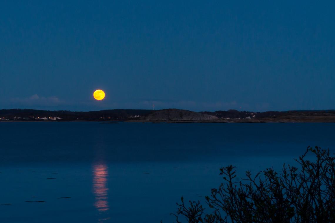Grym måne för alla nattsuddare | Foto: Michael Krantz